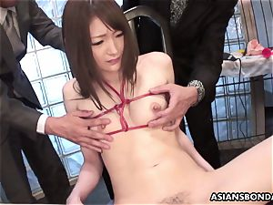 hooded fellows have joy with tied up sensitive puffies